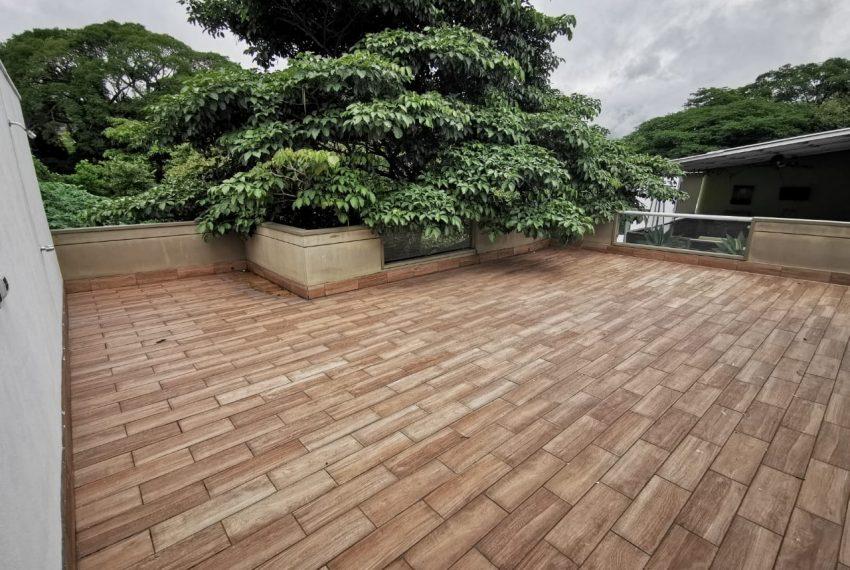 terraza arbol 3